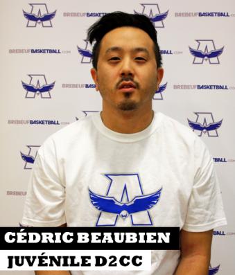 Cédric Beaubien site