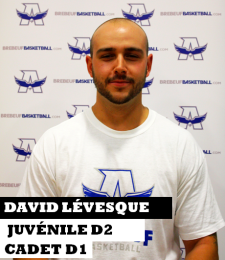 David Lévesque site